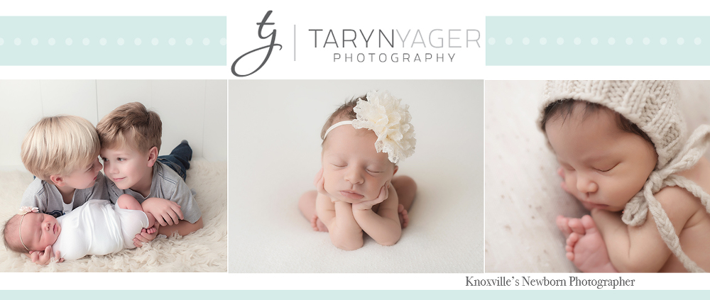 Taryn yager photography knoxville farragut tn leading newborn photographer specializing in newborn and baby photography